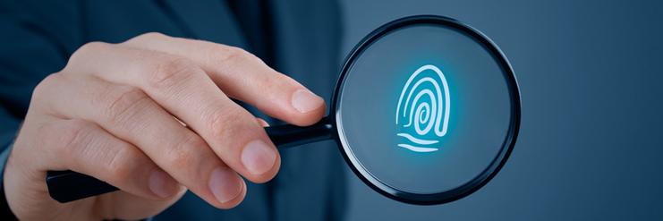 cégátvilágítás, vagyonvédelem vizsgálat